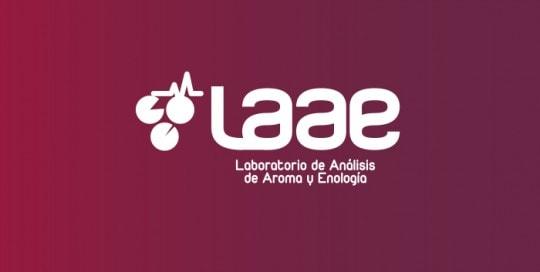 Diseño de logotipo y Branding LAAE